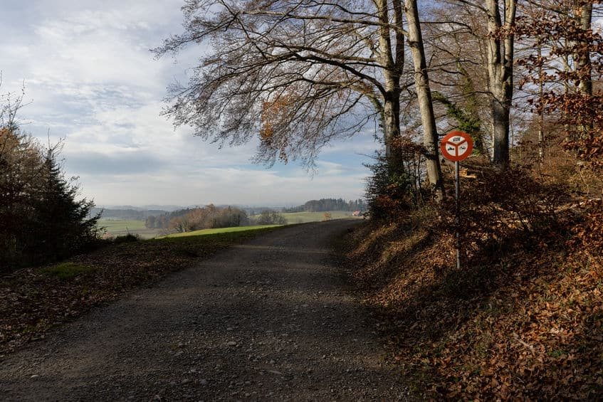 nature must be protected from noise and pollution, forest road with no driving sign, passage forbidden for cars and moto bikes, blue cloudy sky, in the daytime