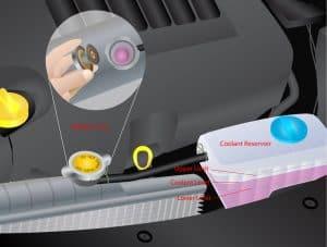 Radiator Coolant Inspection