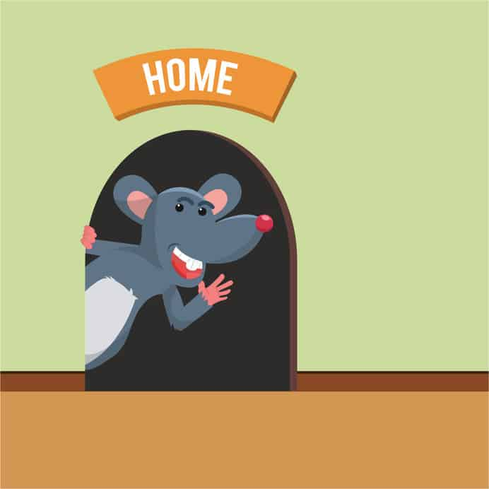 Mouse-home